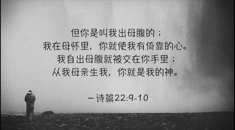 搜狗截图19年01月19日2029_47.png