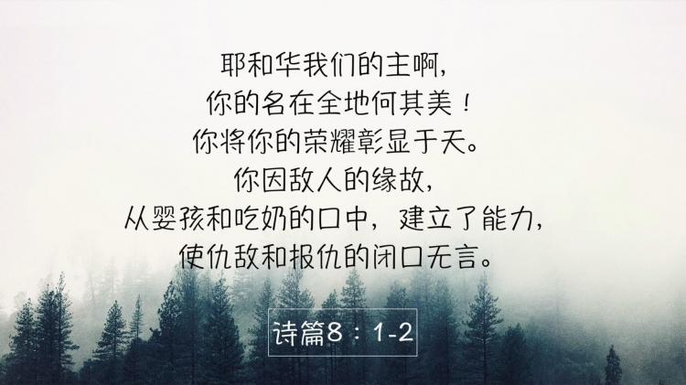 圣经三分钟 诗篇8_20180623130614.JPG