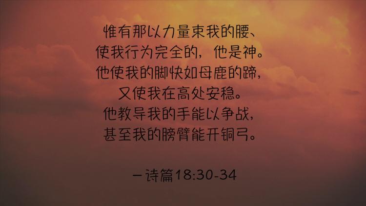 搜狗截图19年01月18日1227_7.png