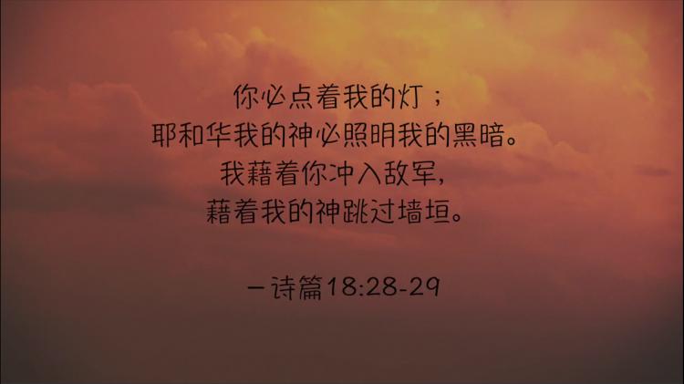 搜狗截图19年01月18日1217_4.png