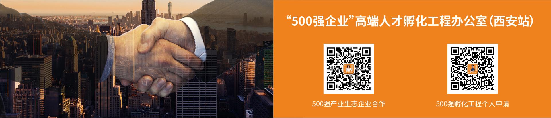 500强网站画板 15-80.jpg
