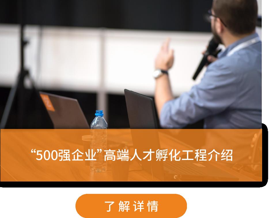 500强网站画板 12.png